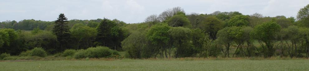 Site officiel de la commune de Peumerit